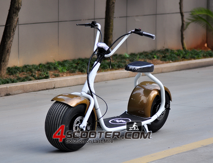 2016 New Big Wheel 800W City CoCo Electric Scooter